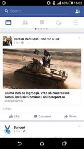 radulescu facebook 2